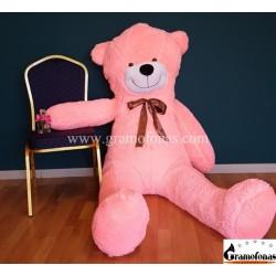 200 (230) cm rožinis meškinas Mr. Martin